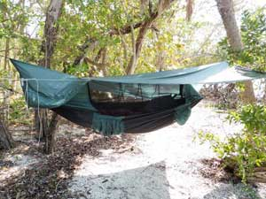 assembled clark hammock on tree